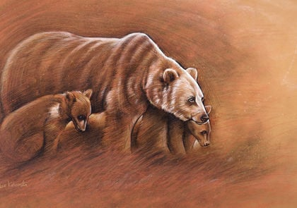 Spirit Animals & Wild Places: Wildlife Art by Dave Kobrenski