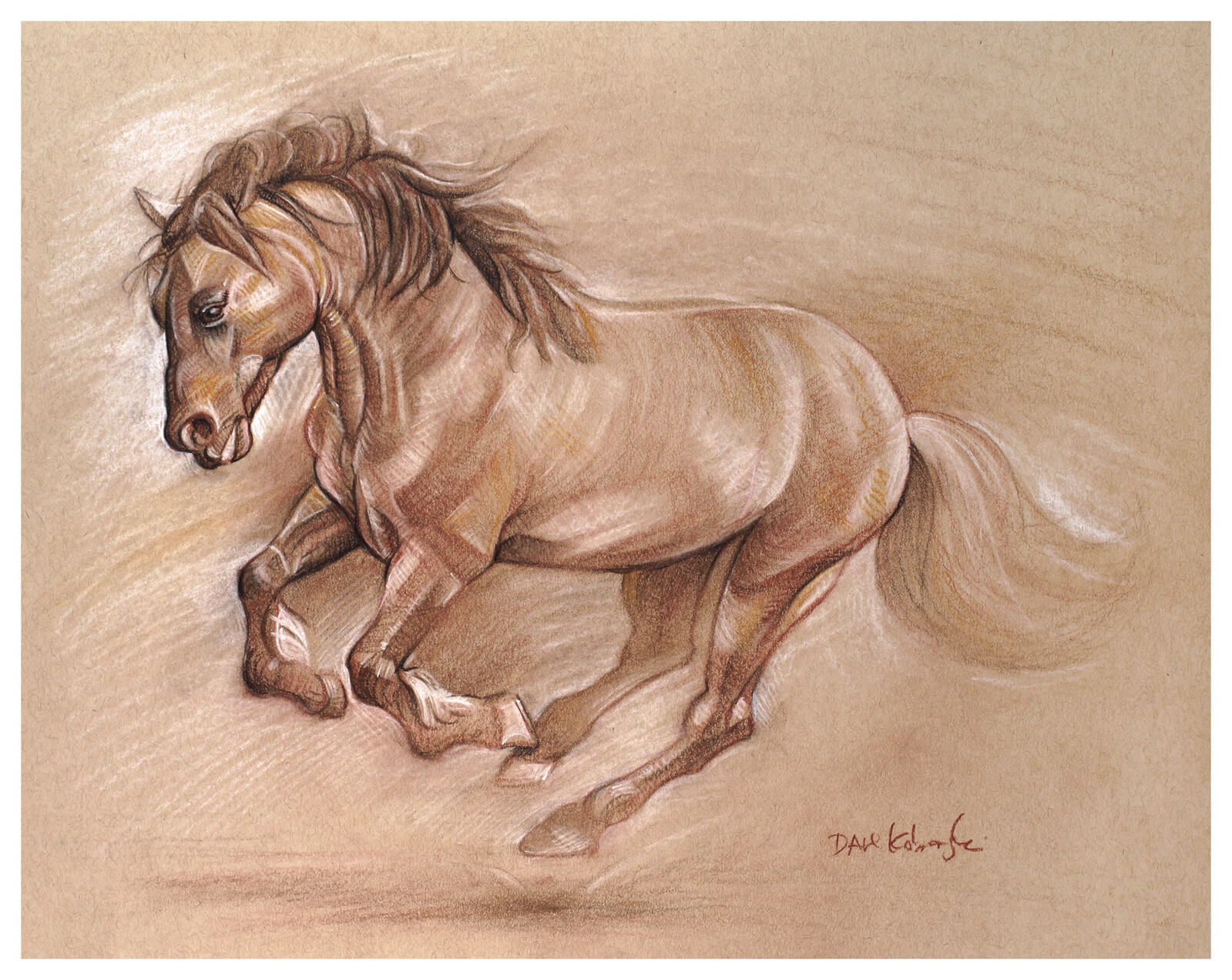 Wild Horse I Spirit Animals Amp Wild Places Drawing By