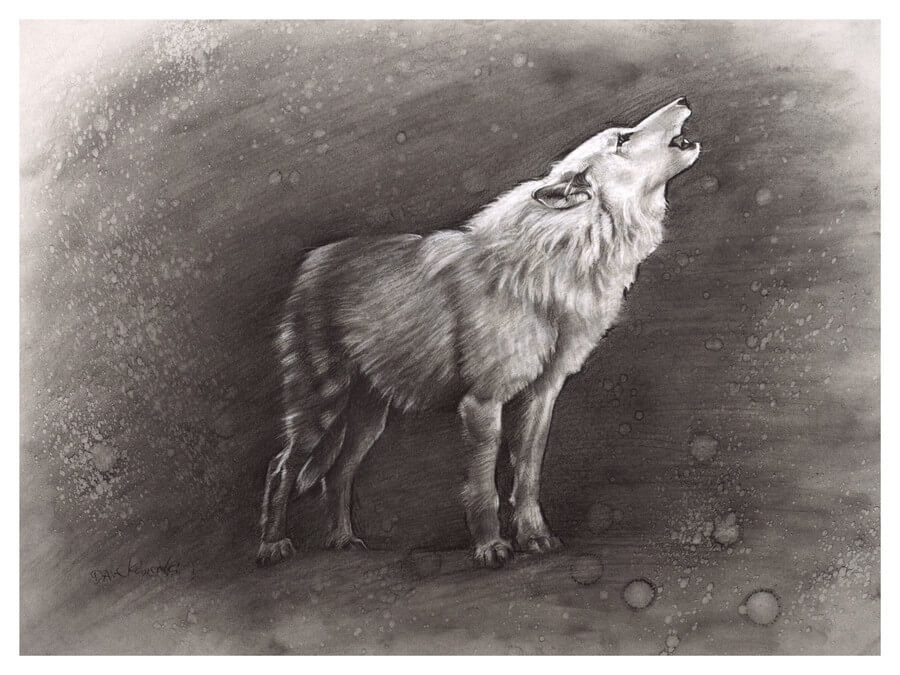 Sunkmanitu Tanka / the Wolf - 18x24 charcoal and conte on toned paper.