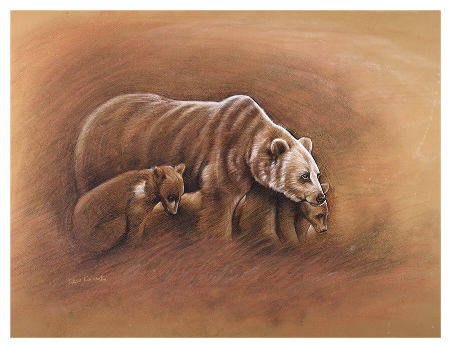 Mato na matocincala / Bear and Cubs - 18x24 charcoal and conte on toned paper.